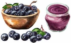 Черноплодная рябина: свойства, противопоказания, рецепт