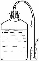 Домашнее вино «Ассорти» (рецепт)